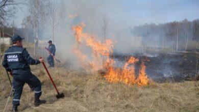 Photo of У Миколаївському районі загорілась суха трава