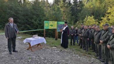 Photo of На Львівщині відкрили нову лісову дорогу