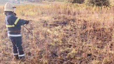 Photo of На Яворівщині згоріло пів гектара сухостою
