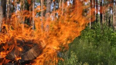 Photo of Мешканців Львівщини попереджають про надзвичайну пожежну небезпеку