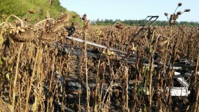 Photo of На Сумщині розбився легкомоторний літак – пілот загинув