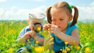 Photo of 23 вересня для маленьких львів'ян проведуть паркові майстер-класи