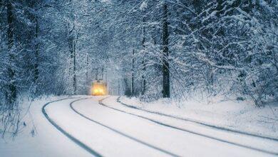 Photo of Зими в Україні, як десять років тому, вже не буде – еколог