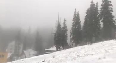 Photo of Зима не за горами. На Львівщині вже випав сніг
