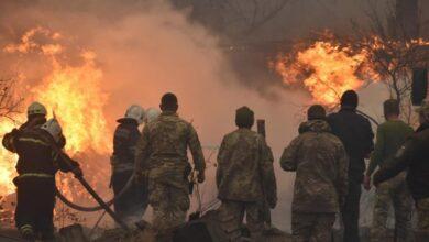 Photo of Пожежі на Луганщині охопили 10 тис. га території – четверо осіб загинули