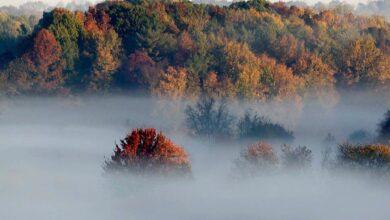 Photo of 13 жовтня на Львівщині – штормове попередження