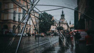 Photo of 8 жовтня у Львові прогнозують дощову погоду