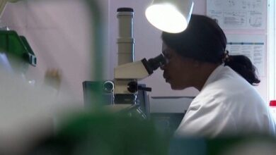 Photo of Результат за 5 хвилин: британські вчені розробили експрес-тест на Covid-19