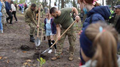 Photo of У парку «Високий Замок» висадили понад 400 дерев