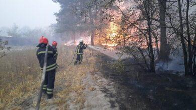 Photo of Пожежі на Луганщині: що відомо, причини та чи допоможе погода
