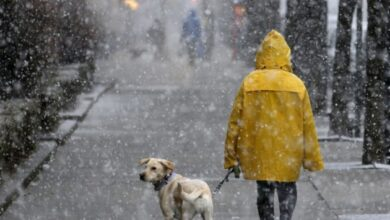 Photo of 18 жовтня на Львівщині прогнозують дощ з мокрим снігом