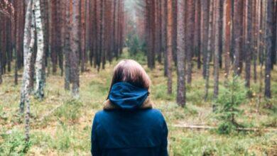 Photo of В лісі на Жовківщині розшукали неповнолітню львів'янку