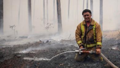 Photo of На Луганщині ліквідували майже всі основні осередки лісових пожеж
