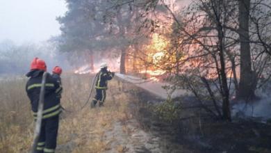 Photo of Пожежі на Луганщині: рятувальники продовжують гасити 4 основні осередки