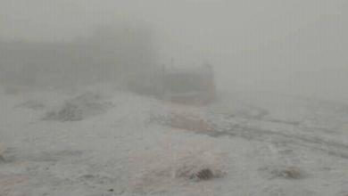 Photo of У Карпатах випало 5 см снігу і нижче нуля градусів