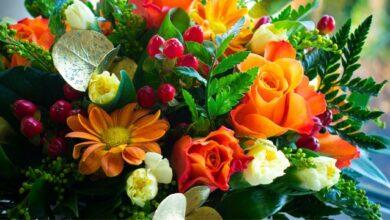 Photo of Які квіти подарувати на День вчителя 2020