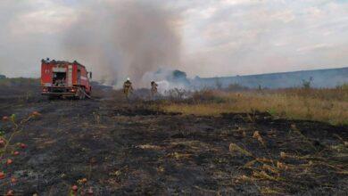 Photo of Кількість загиблих у пожежах на Луганщині збільшилась до 11