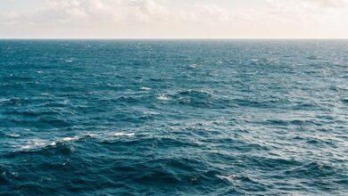 Photo of Японія зіллє радіоактивну воду з Фукусіми у море