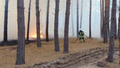 Photo of Поліцейські знайшли джерела вогню на Луганщині