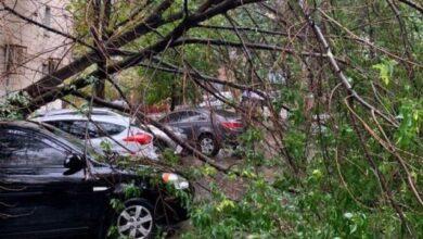 Photo of Злива затопила вулиці та повалила дерева: фото та відео наслідків негоди в Києві