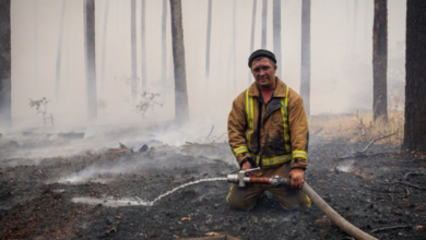 Photo of Рятувальники ліквідували усі пожежі на Луганщині
