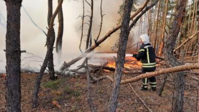 Photo of Кабмін направить 185 млн грн постраждалим від пожеж у Луганській області