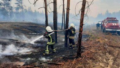 Photo of Площа пожеж на Луганщині перевищила 20 тис. га, гасять 7 основних осередків вогню