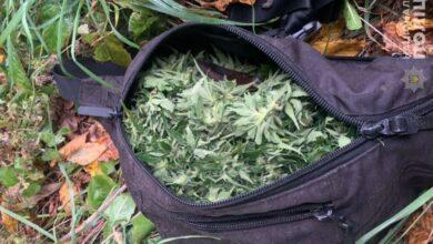 Photo of 25-річного мешканця Нового Роздолу затримали з пакетом наркотиків