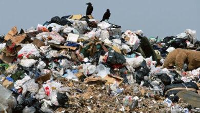 Photo of На вулиці Богданівській виявили стихійне сміттєзвалище